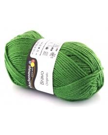 Włóczka Bravo kolor zielony 8191