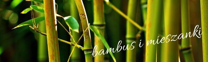 Włóczka z dodatkiem bambusa